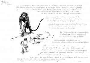 Carnithèques planche 2 (Carnithèques de Faërie)