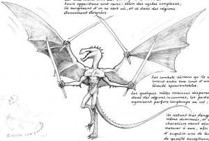 Draconide mâle : 4 bras, 4 lames (Draconides de Faërie)