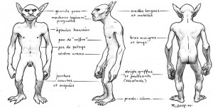 Gobelin nu - face, profil, dos