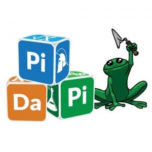 Logo Pidapi V3 (Logo Pidapi : des cubes et … des grenouilles, bien sûr.)