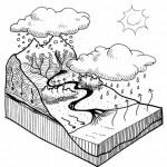 Pidapi : le cycle de l'eau
