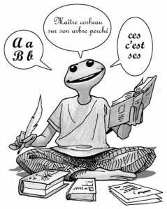 Pidapi V6 : la grenouille du français (Pidapi V6 : la cuvée des grenouilles 2012)