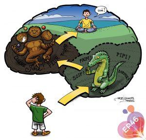 Les 3 étapes de la réflexion chez l'enfant (Les 3 cerveaux)